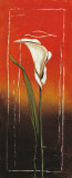 Calla-1 Affiches par Matilda Ellison