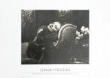 Marlene Dietrich Art by Edward J. Steichen