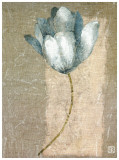 Tulipe Bleue I Prints by Philippe Paput
