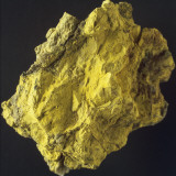 Close-Up of Carnotite Photographic Print by G. Cigolini