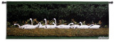 Swan Rig Wall Tapestry by Bob Timberlake