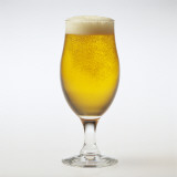 Close-Up of a Glass of Beer Photographic Print by G. Cigolini