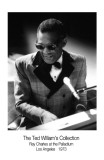 Ray Charles Art Print by Ted Williams