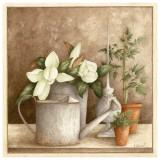 Arrosoir et Fleurs Affiches par Vincent Perriol