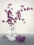 Royal Blossom II Posters par Franz Heigl