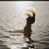 Silhouette of Woman Splashing Hair Out of Water Photographic Print by Dennis Hallinan