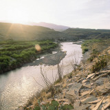 View at Sunrise of Ocotillo Growing on Banks of Rio Grande River Near Hot Springs Photographic Print by Jeff Foott