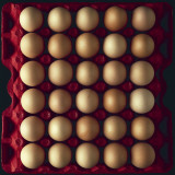 High Angle View of Eggs in a Carton Photographic Print by J. Masson