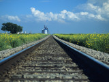 Train Tracks with Wild Flowers, Western Texas, Texas, Usa Photographic Print by Alex Adams