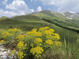 Panoramic View of a Mountain Range, Mt Sibillini, Monte Sibillini National Park, Marches, Italy Photographic Print by C. Sappa