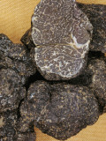 Close-Up of Black Truffles (Tuber Melanosporum) Photographic Print by P. Puccinelli