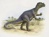 Side Profile of Ceratosaurus Dinosaur