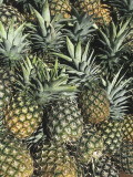 Close-Up of Pineapples Photographic Print by L. Romano