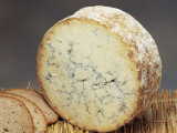 Close-Up of Cheese (Stilton) Photographic Print by G. Cigolini