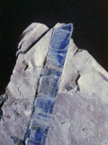 Close-Up of Kyanite Photographic Print by C. Bevilacqua