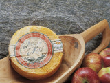 Close-Up of Cheese in a Wooden Scoop (Queijo De Nisa) Photographic Print by G. Cigolini