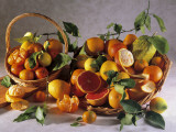 Close-Up of Various of Citrus Fruits in Baskets Photographic Print by P. Martini