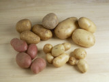 High Angle View of Raw Potatoes Photographic Print by M. Sarcina