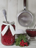 Close-Up of a Jar and a Bowl of Red Currants with Syrup Photographic Print by N. Chasseriau