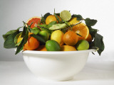 Close-Up of Various Citrus Fruits in a Bowl Photographic Print