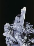 Close-Up of a Prismatic Aragonite Rock Photographic Print by C. Bevilacqua