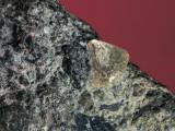 Close-Up of a Rough Diamond Photographic Print by C. Bevilacqua
