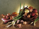 Close-Up of Onions Photographic Print by P. Martini