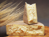 Close-Up of Cheese (Single Gloucester) Reproduction photographique par G. Cigolini