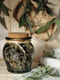 Close-Up of Dried Sage Leaves in a Jar Photographic Print by N. Chasseriau