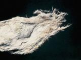 Close-Up of Demantoid in Asbestos Photographic Print by C. Bevilacqua