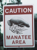 Detail of Warning Sign in Manatee Area Photographic Print by Jeff Foott