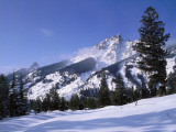 Mount Teewinot, Pinetrees, and Lupine Meadows in Winter Photographic Print by Jeff Foott