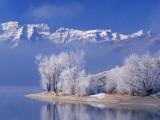 Usa, Utah, Deer Creek State Park Photographic Print by Jeff Foott