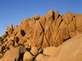 Sunset Light on Sandstone Cliff and Balancing Rock, Joshua Tree National Monument, California, Usa Photographic Print by Jeff Foott