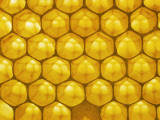 Backlit Honeycomb Photographic Print by Jeff Foott
