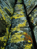 Yellow, White and Orange Lichen Covers Basalt Columns Photographic Print by Jeff Foott