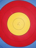 Archery Target with Holes in Centre Photographic Print