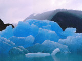 Several Icebergs Sit in Water Photographic Print by Jeff Foott