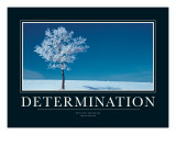 Determination Giclee Print by Jeanne Apelseth