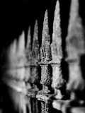 A Fence around a Cemetery in Gothenburg, Sweden Photographic Print