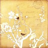 Song Birds VI Poster von Amy Melious