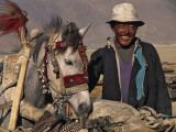 Tibetan Man with Decorated Horse,Tibet, China, Photographic Print