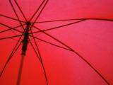 Under Red Umbrella Photographic Print