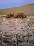 Cracked, Sun Baked Mud Photographic Print by Jeff Foott