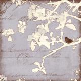 Song Birds VIII Poster von Amy Melious