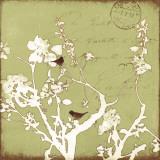 Song Birds II Poster von Amy Melious