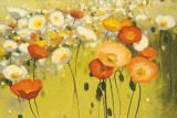 Spring Confetti Prints by Shirley Novak