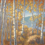 Fall Aspen I Prints by John Macnab