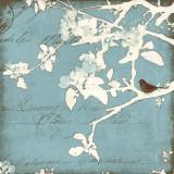 Song Birds III Poster von Amy Melious