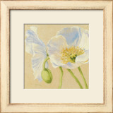 White Poppies I Prints by Shirley Novak